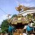 墨田の神輿