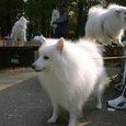 水元公園(げんき君)