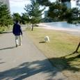 海浜公園散歩