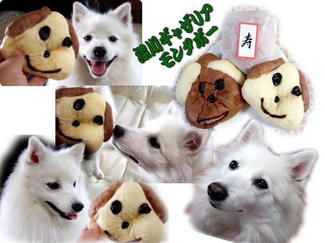 1-4sumidagawa1